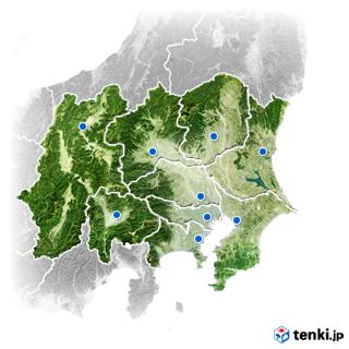 情報 東京 花粉