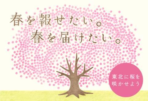 春を報せる百円桜プロジェクト