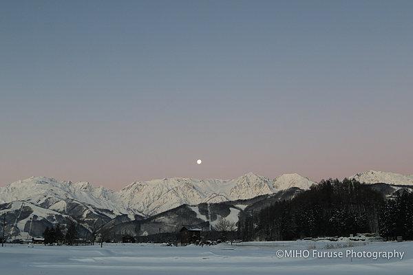 冬限定!天からの贈り物、「雪景色」をイメージ通りに撮影するコツ