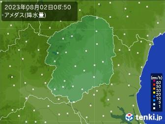 栃木県のアメダス実況(降水量)