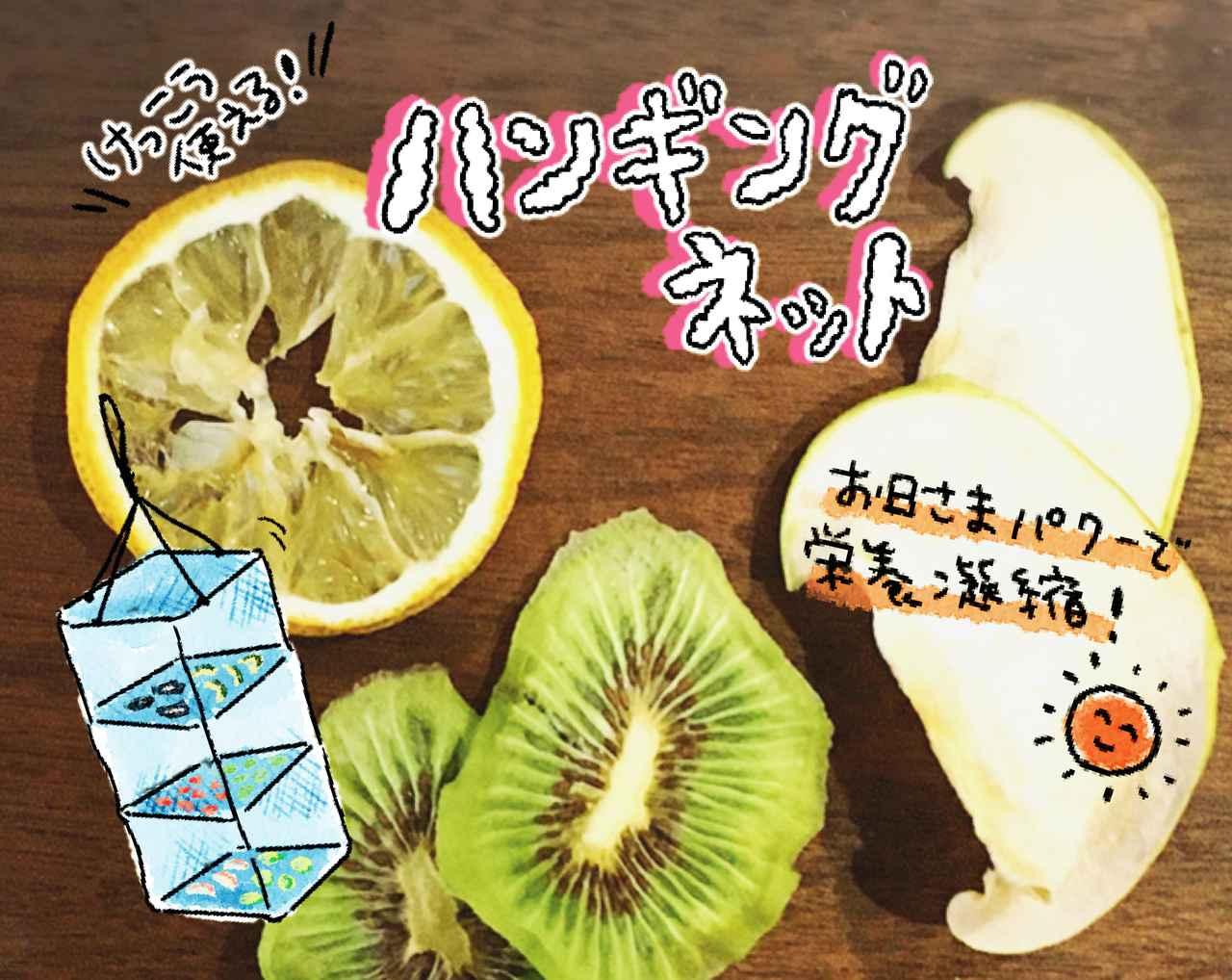 レモン ドライ フルーツ 作り方