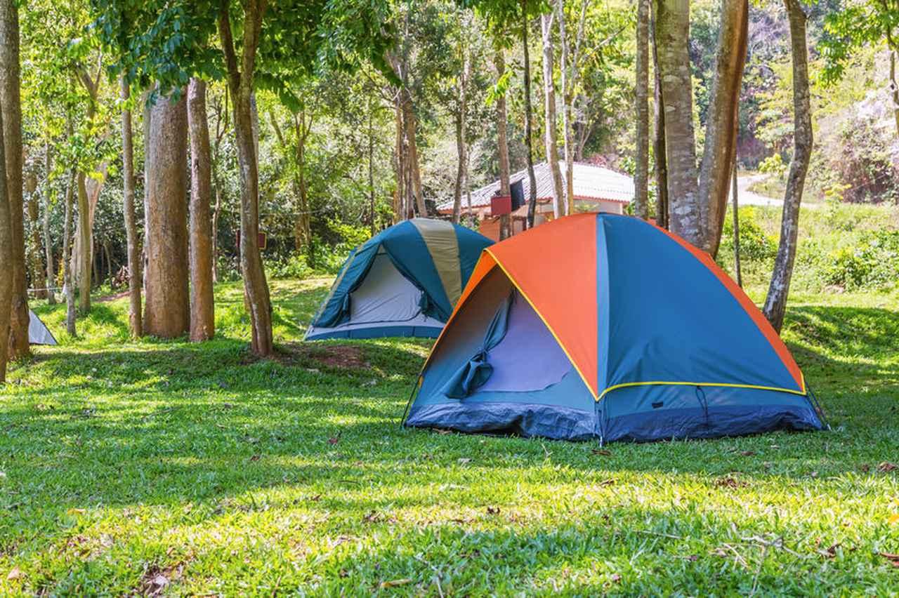 【全国】エコロジーキャンプ場&環境に配慮しているキャンプ場4選!エコキャンプを楽しもう