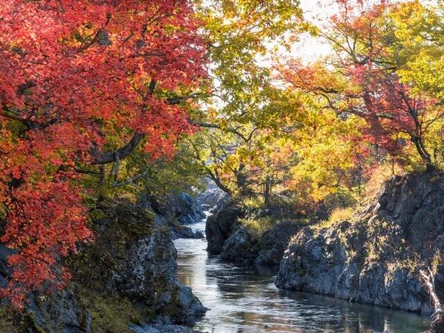 滝上渓谷 錦仙峡の写真