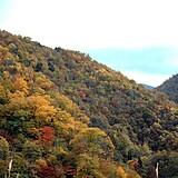 田代山付近