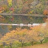 朝日スーパーライン(三面ダム周辺)
