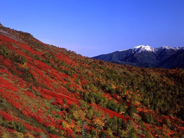 赤岳銀泉台の写真