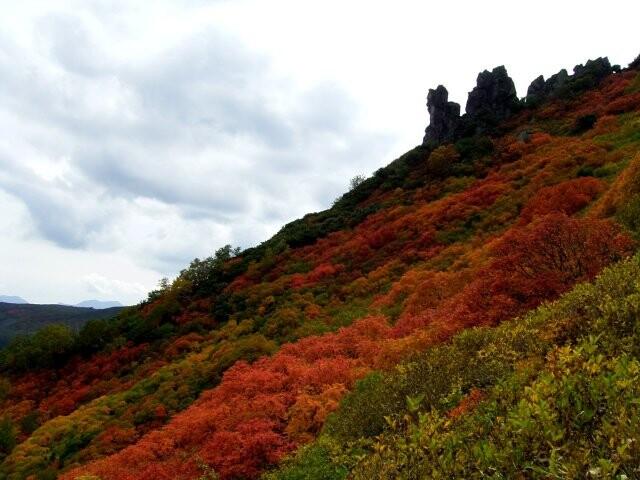 黒岳の写真