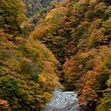 ユーシン渓谷