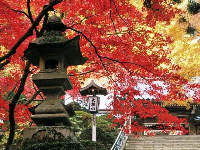 大雄山最乗寺の写真