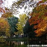 善福寺川緑地・和田堀公園