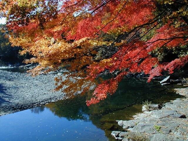 嵐山渓谷の写真