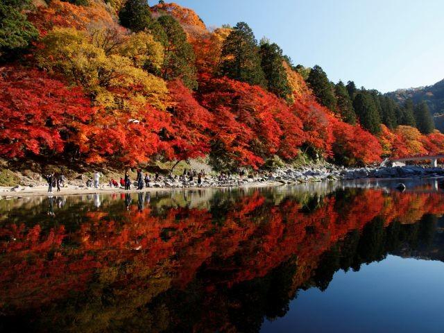 香嵐渓の写真
