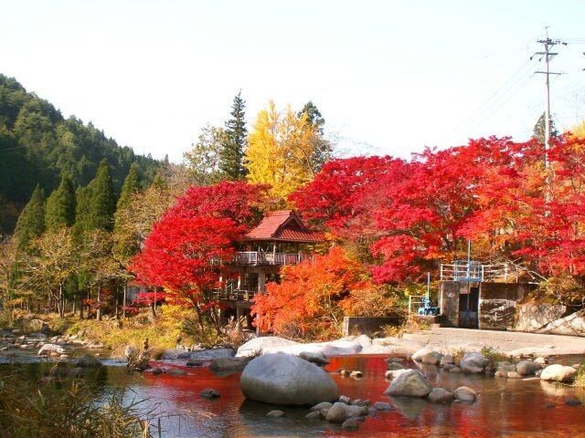 大井平公園の写真