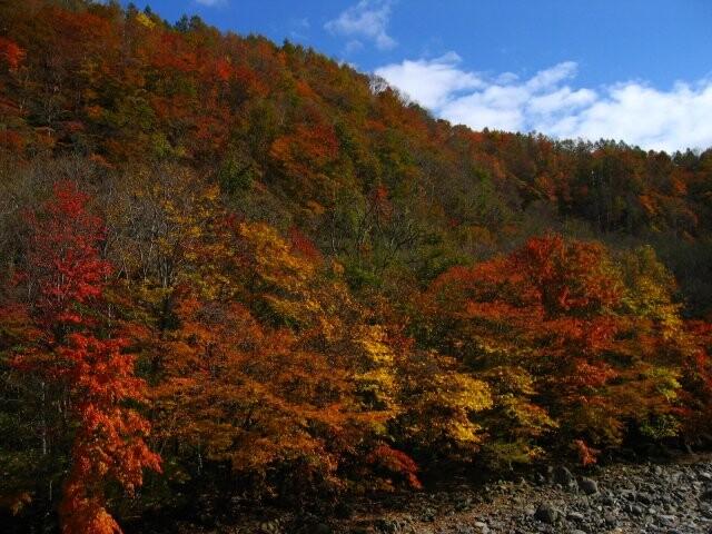 葛根田渓谷の写真