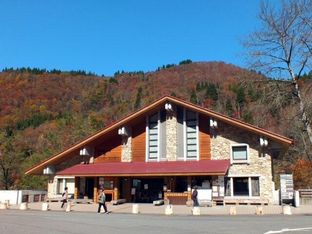 白山市白峰県道白山公園線沿線の写真