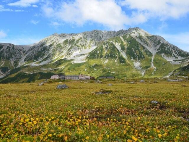 立山・室堂平の写真