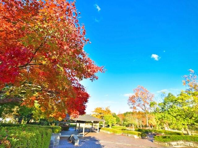 越前陶芸公園の写真