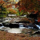 県立自然公園 八重滝