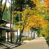 絲原記念館 庭園