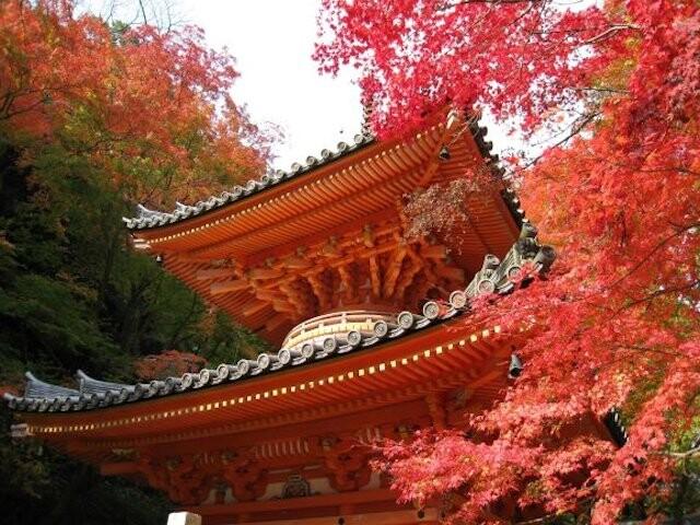 牛滝山 大威徳寺の写真