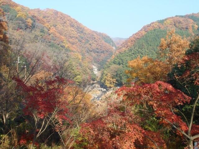 摂津峡公園の写真
