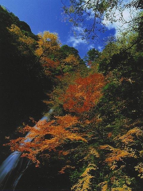 原不動滝の写真