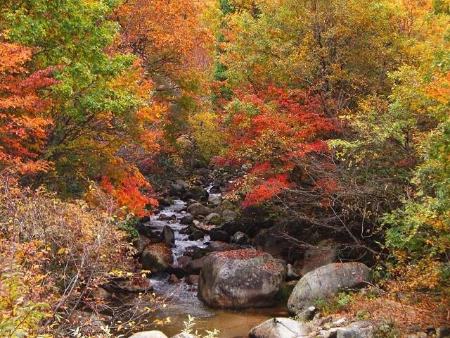 赤和瀬渓谷の写真