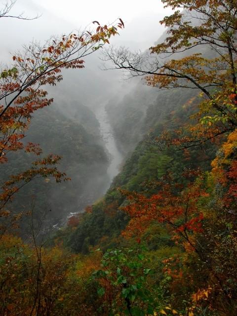 竜ヶ岳の写真