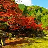 華山(神上寺)