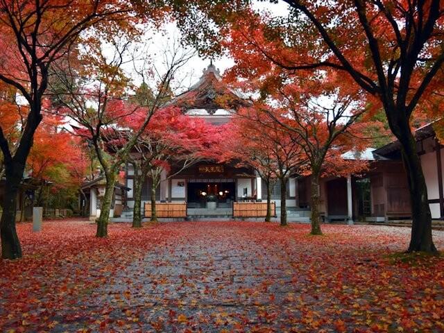 呑山観音寺の写真