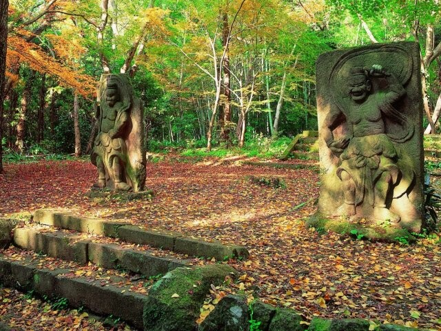 六郷満山ふれあい森林公園の写真
