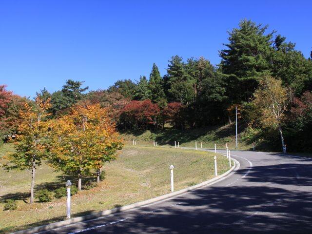 眺海の森の写真