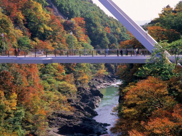 高津戸峡の写真