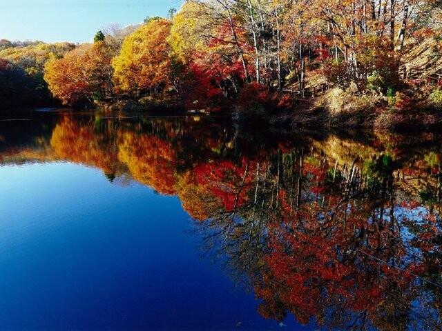 震生湖の写真