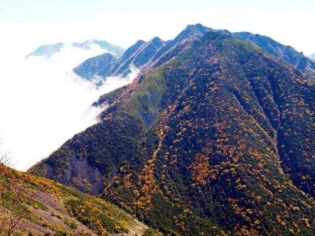 南アルプス白鳳渓谷の写真
