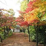 城崎温泉東山公園