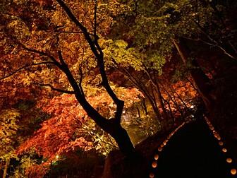 東郷公園 秩父御嶽神社