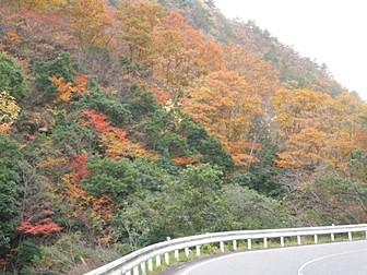 松ヶ谷渓谷