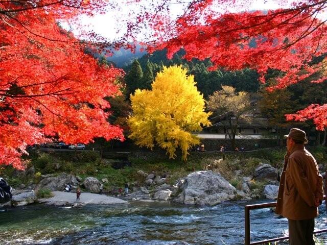 御岳渓谷の写真