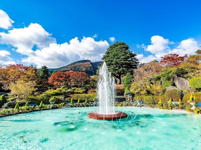 箱根強羅公園の写真