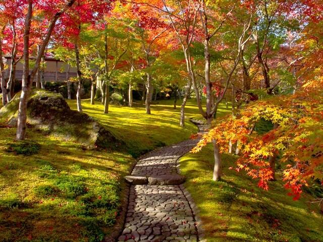 箱根美術館の写真