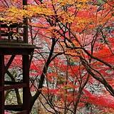 王地山公園