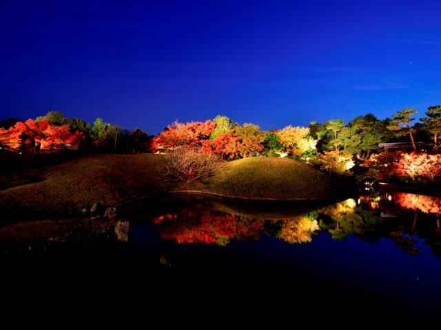 梅小路公園の写真