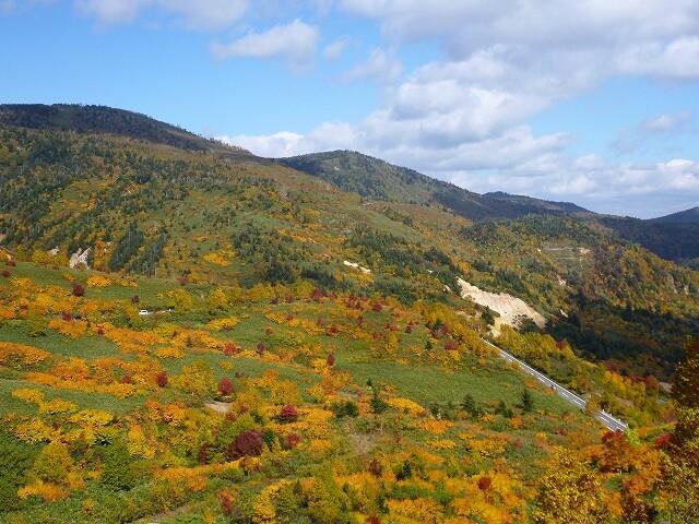 十和田八幡平国立公園 八幡平地域 八幡平アスピーテライン(御在所)の写真