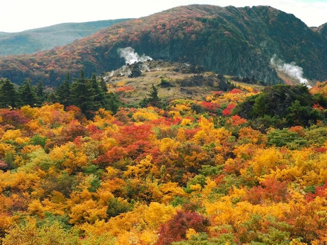 栗駒山(須川)の写真