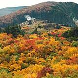 栗駒山(須川)