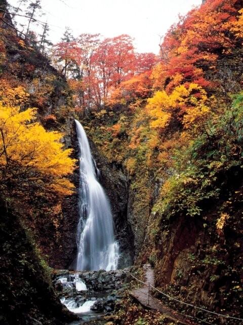 白神山地 暗門の滝の写真