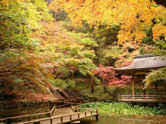 加茂山公園の写真