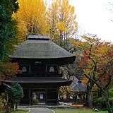秋川渓谷(広徳寺周辺)