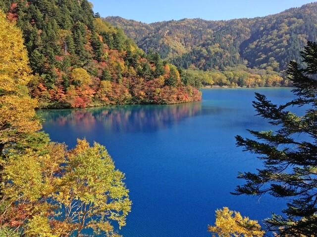志賀高原の写真